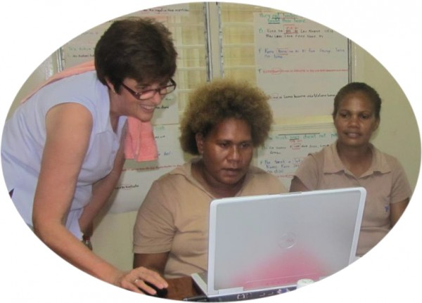Specialised consulting to language development projects