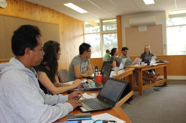 Effective training in language description and development